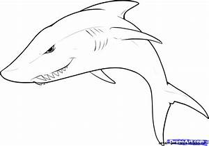 Easy Animal Drawings Step By Step | Amazing Wallpapers