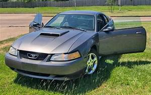 '03 Ford Mustang Under $3000 in Houston, TX 77031 (Gray, By Owner) - Autopten.com