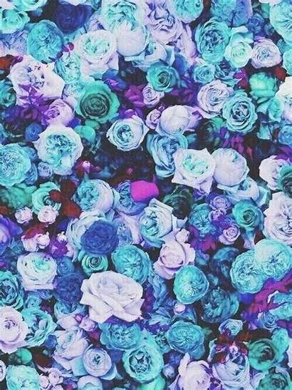 Teal Purple Wallpapers