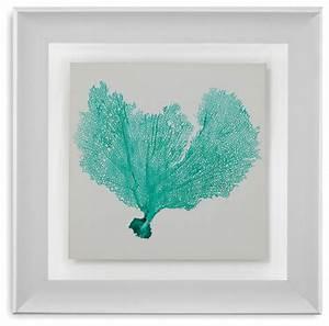 """""""Sea Fan VI"""" Framed Art Under Glass - Beach Style - Prints ..."""