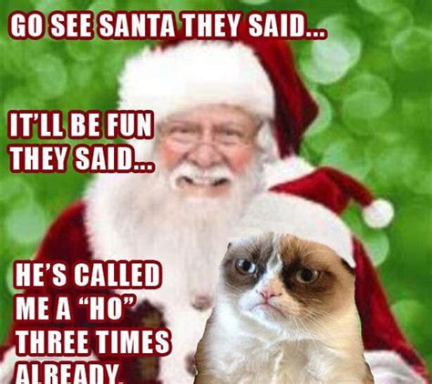 Santa Memes - the best of grumpy cat 24 pics kill the hydra