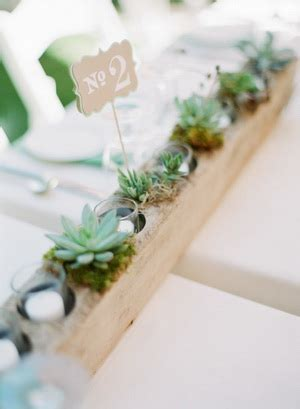 succulent wedding ideas   big day tulle