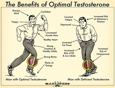Benefits of Testosterone Replacement – Pro Health Wellness