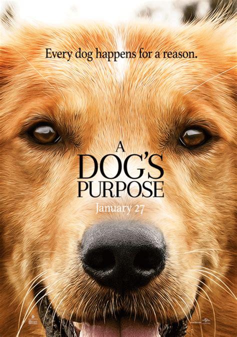 Suņa dzīves jēga (2D) (EN) - Biļešu serviss