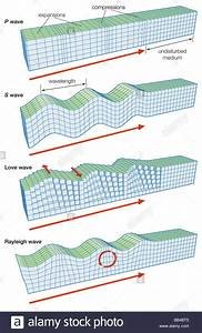The Main Types Of Seismic Waves  P  S  Love  And Rayleigh