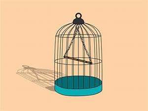 Cómo dibujar una jaula para pájaros: 8 pasos