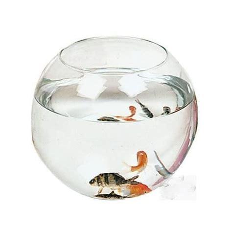 ufr reims bureau virtuel aquarium rond pas cher 28 images mod 232 le acheter