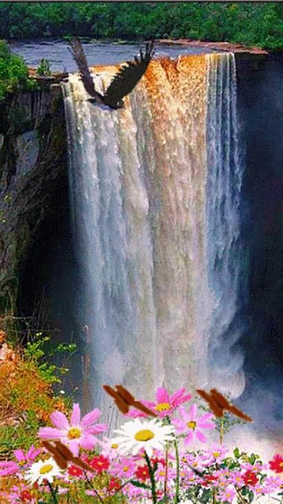 Nature Namaste Animated Amazing Waterfall Flowers Places