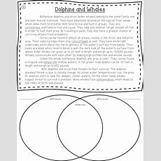 Short Informational Passages To Teach Students How To Compare And Contrast  Venn Diagram