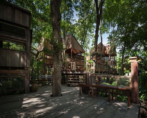 Backyard Jungle: Stunning Eco Friendly Homes Engulfed in