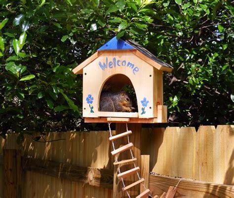 diy yard decorations squirrel house designs  build