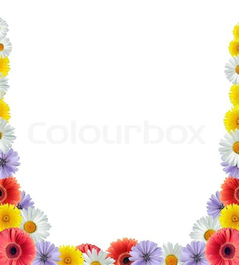 nice flower frame  white stock photo colourbox
