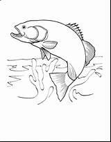 Fishing Coloring Fish Printable Getdrawings Getcolorings sketch template