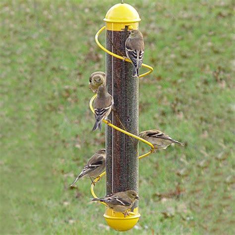 duncraft com yellow spiral finch feeder