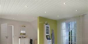 Dunkle Farbe überstreichen : kunststoffpaneele streichen wandverkleidung in einer ~ Lizthompson.info Haus und Dekorationen