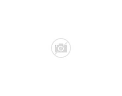 Charlotte County Florida Areas Svg Highlighted Incorporated