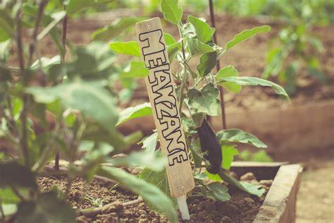 lade per coltivazione azienda agricola biologica la fragola de bosch