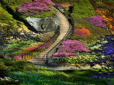 flower landscape images my amazing things blog beautiful flower garden photos