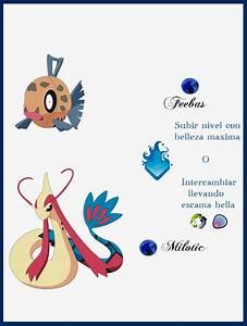 Pokemon Feebas Evolution Images | Pokemon Images