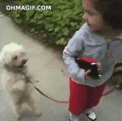 Dog Standing GIF - Find & Share on GIPHY
