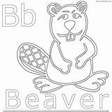 Beaver Coloring Pages Chakiradecor sketch template