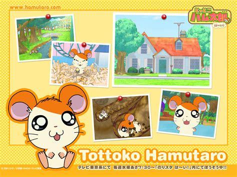 hamtaro  shin chan en vf dessin anime jeunesse