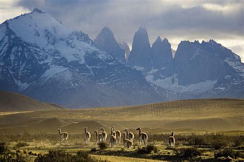 Chile South Birding Tour  Eagleeye Tours