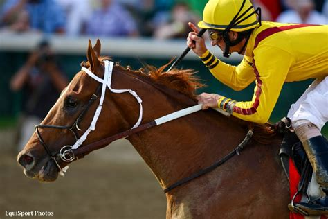 curlin relocating  hill  dale horse racing news