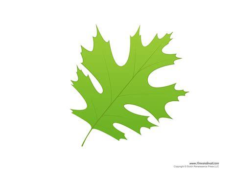 leaf templates leaf coloring pages  kids leaf