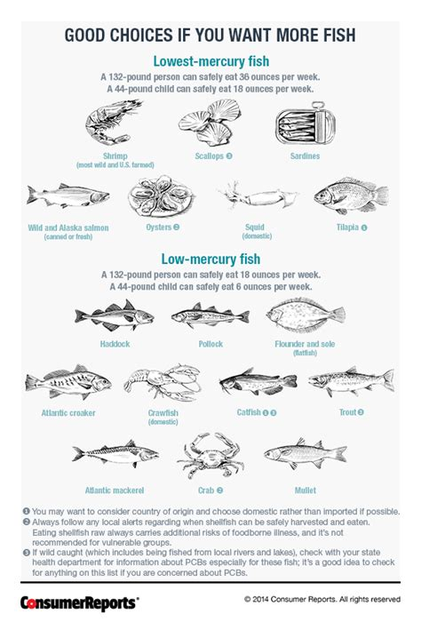mercury  high mercury fishes consumer reports