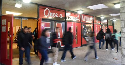 odds  stacked  east aurora students