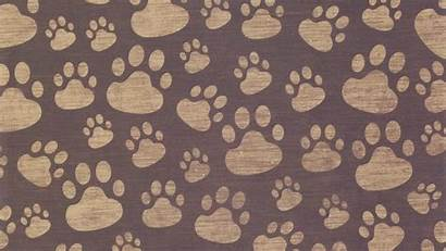 Paw Paws Background Prints Wallpapers Surface Dog