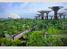 Green MashUP the rise of biophilic cities News Eco