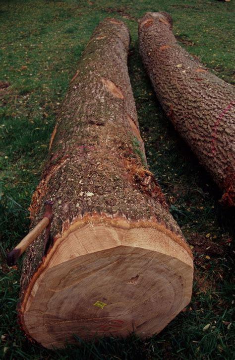 chambre d agriculture vend馥 forestiers d 39 alsace actualités