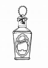 Perfume Chanel Template N5 Coloring Pages sketch template