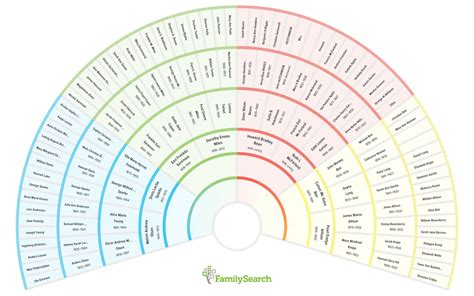 genealogy fan chart print family tree template
