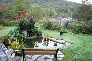 Pflanzen Rund Um Den Gartenteich : 1001 ideen und gartenteich bilder f r ihren traumgarten ~ Whattoseeinmadrid.com Haus und Dekorationen