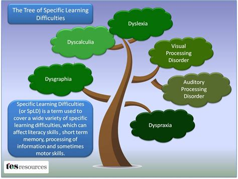 The Tree Of Specific Learning Difficulties  Posts Terapia