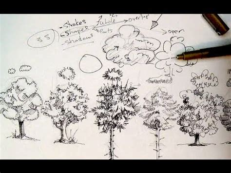 ink drawing tutorials   draw trees youtube