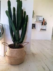 Cache Pot Interieur : cactus avec cache pot panier bloomingville grand cactus ~ Premium-room.com Idées de Décoration
