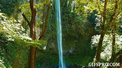 Tropical Waterfalls Gifspro Animated