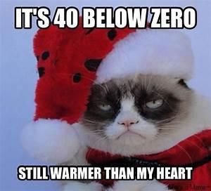 That's cold... Konijnen Quotes