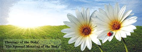 Of The Gods Flowers by The Analogy Of The Flower Keen For God