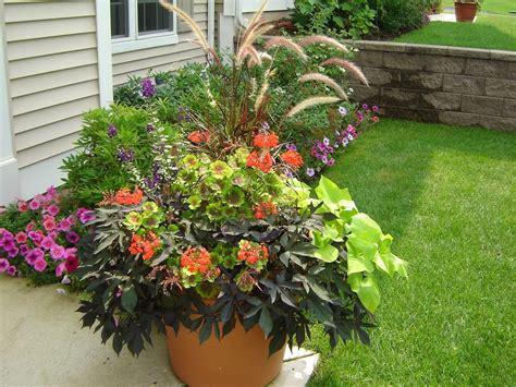 outdoor flowers outdoor flower pot ideas flower idea