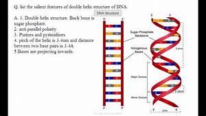 Cbse Board Papers Class 12 - 2012 - Biology