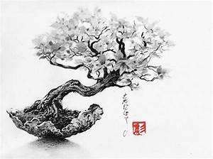 Dessin Fleur De Cerisier Japonais Noir Et Blanc : c novel dessins archive du blog bonsa ~ Melissatoandfro.com Idées de Décoration