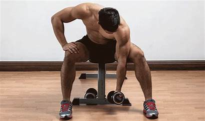 Curl Concentration Arm Head Curls Dumbbell Muscle