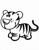 Tiger Coloring Pages Cute Baby Tigers Clipart Cub Cartoon Simple Printable Cubs Clip Cliparts Kindergarten Animal Drawing Draw Safari Forest sketch template