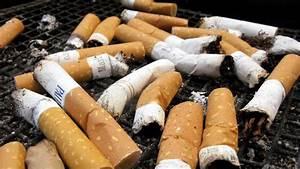Nikotin Von Holztüren Entfernen : tabak hilft v geln nikotin schreckt parasiten ab n ~ A.2002-acura-tl-radio.info Haus und Dekorationen