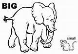 Coloring Opposites Clipart Elephant Mouse Esl Adjectives Vocabulary Sheet Worksheet Grammar Comparatives Preschool Worksheets Than Smaller Coloringsheet Picssr Tagged Bigger sketch template